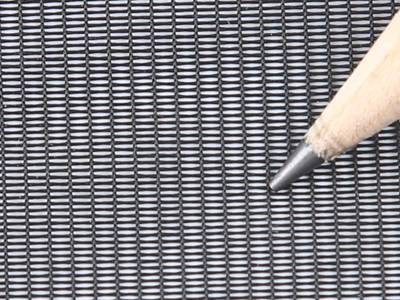 A pencil point on the pollen screen mesh.
